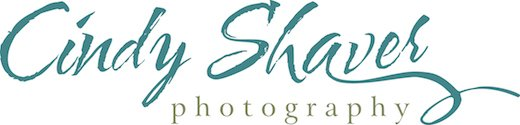 Cindy Shaver Photography